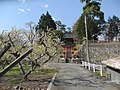 熊野神社全体像.jpg