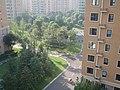 都市森林的道路 - panoramio (1).jpg