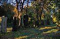 013 - Wien Zentralfriedhof 2015 (22603854134).jpg
