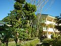 09514jfAlexis G. Santos National High School Liciada, Bustos Bulacanfvf 31.jpg