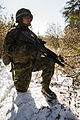 1-8 Marines Deployment for Training Exercise 150218-M-OU200-021.jpg
