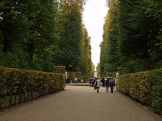 Sanssouci Park - Clipped hedges and clipped trees keep the allées open