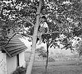 1943 Fortepan 5147.jpg
