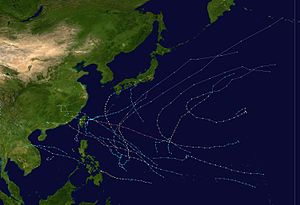 1969 Pacific typhoon season summary.jpg