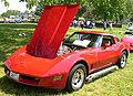 1981 Chevrolet Corvette last day.jpg