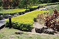 2010 07 15910 5589, Dulan, Plants, Taiwan.JPG