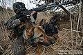 2013. 5 201특공여단 독수리 전문유격훈련. 201 Commando Brigade, Eagle guerrilla training. (8716252416).jpg