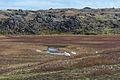 2014-09-16 12-38-28 Iceland Suðurland Skogar Landmannalaugar.jpg