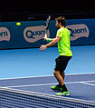 2014-11-12 2014 ATP World Tour Finals Alexander Peya playing volley by Michael Frey.jpg