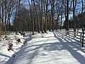 2016-01-31 14 06 05 A tributary of Hosepen Run and a snow-covered trail in a snowy woodland eight days after the Blizzard of 2016 in the Franklin Farm section of Oak Hill, Fairfax County, Virginia.jpg