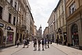2017-05-31 Floriańska Street in Kraków 2.jpg