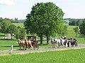 21te Rammenauer Schlossrundfahrt der Pferdegespanne (086).jpg