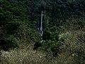 233, Taiwan, 新北市烏來區烏來里 - panoramio (1).jpg