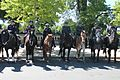 27.MountedPolice.NPOM.WDC.15May2017 (34146474693).jpg
