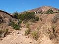 35637 Betancuria, Las Palmas, Spain - panoramio (10).jpg