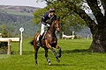 582 William Fox-Pitt onSeacookie.jpg