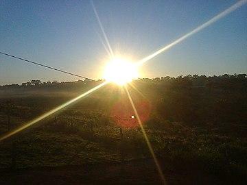 88b O despontar do Sol, fazendo à alegria da passarada no meu torrão natural.jpg
