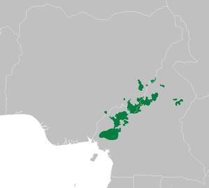 Cameroonian Highlands forests - Cameroonian Highlands forests.
