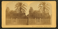 A Florida residence with date trees, from Robert N. Dennis collection of stereoscopic views 2.png