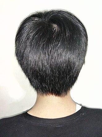 Black hair - Image: A boy with short black hair, rear view