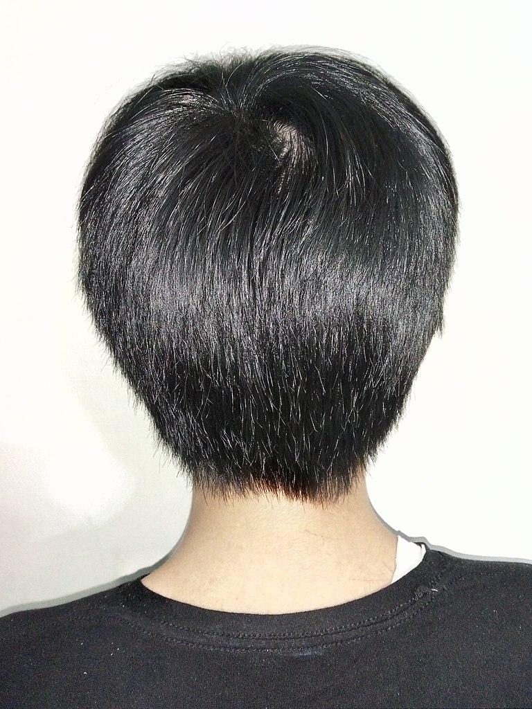 File:A boy with short black hair, rear view.jpg ...