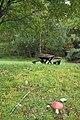 A cosy picnic site by Altnaglander cottages. - geograph.org.uk - 258095.jpg