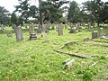 A guided tour of Broadwater ^ Worthing Cemetery (32) - geograph.org.uk - 2337787.jpg