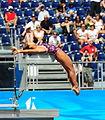 A platform diver at the 2009 FINA World Aquatics Championships (3734433919).jpg