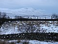 A view towards Ingleborough from Winterscales - geograph.org.uk - 1152744.jpg
