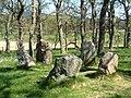Aboyne Stone Circle - geograph.org.uk - 295331.jpg