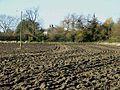 Abshields Farm - geograph.org.uk - 1044434.jpg