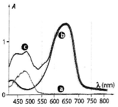 Absorption spectra of various colorants.jpg