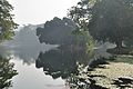 Acharya Jagadish Chandra Bose Indian Botanic Garden - Howrah 2011-01-08 9736.JPG