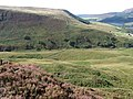 Across Torside Clough - geograph.org.uk - 1498066.jpg