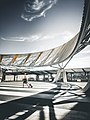 Adelaide Airport, Australia (Unsplash).jpg