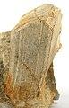 Albite-Muscovite-Spodumene-rw07c.jpg