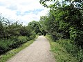 Along the Biddulph Valley Way - geograph.org.uk - 1932062.jpg