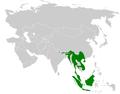 Alophoixus distribution map.png