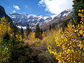 Alpine Loop 2007 006.JPG