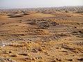 Alxa Zuoqi, Alxa, Inner Mongolia, China - panoramio - 摩游乐 (172).jpg