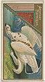 American Ptarmigan, from the Game Birds series (N13) for Allen & Ginter Cigarettes Brands MET DP834657.jpg