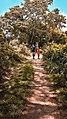 Anawilundawa RAMSAR Wetland Sanctuary.jpg