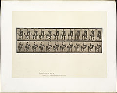 Animal locomotion. Plate 600 (Boston Public Library).jpg