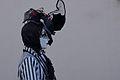 Annecy Carnaval (13337465393).jpg