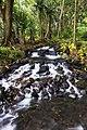 Anse des cascades, Parc National de La Réunion.jpg