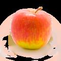Apple in lightbox.png