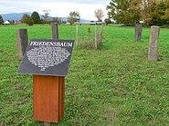 Arboretum Main Taunus Friedensbaum