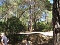 Archaggelos, Greece - panoramio (28).jpg