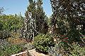 Argotti gardens-IMG 1411.jpg