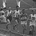 Athletics, 5000 m, Berlin 1936.jpg